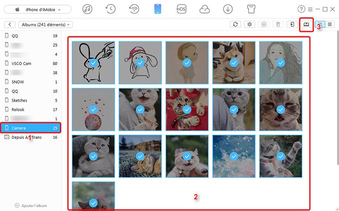 Comment transférer les photos d'iPhone vers PC rapidement – étape 3