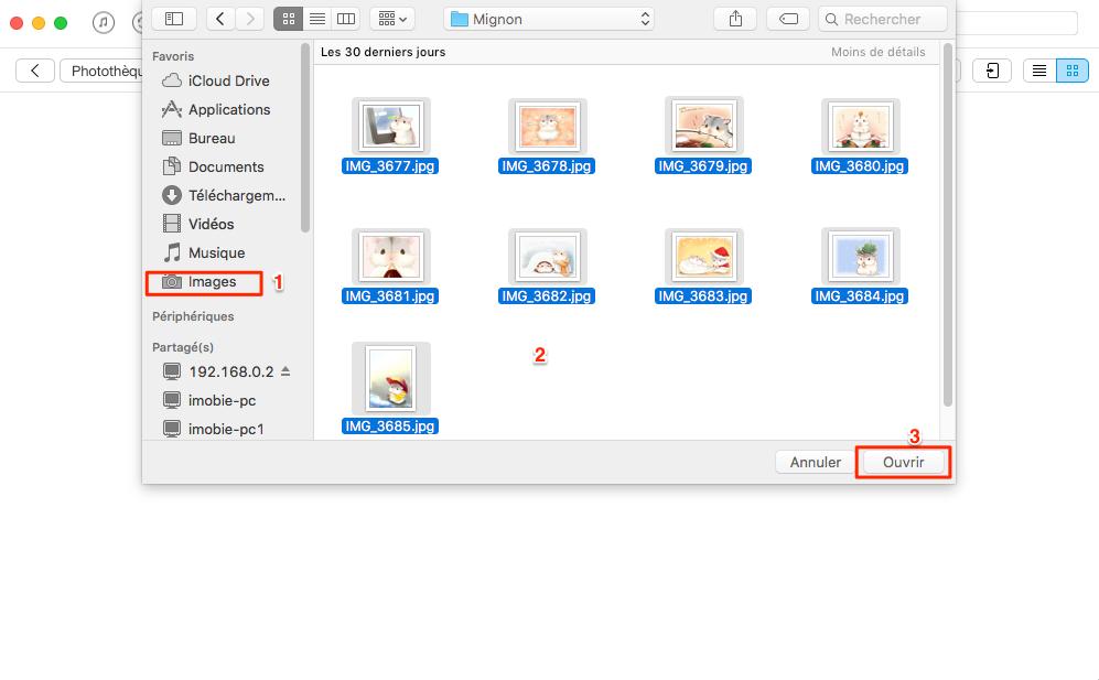 Transférer des photos de l'ordinateur à l'iPhone 6/6s via AnyTrans – étape 3