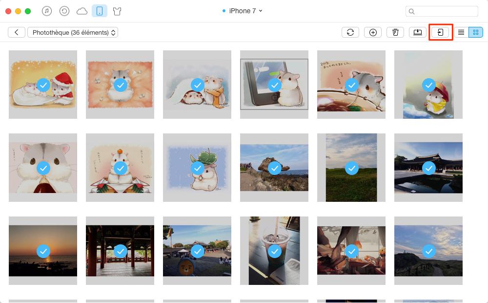 Transférer toutes les photos de l'iPhone 7 à iPad en un clic - étape 2