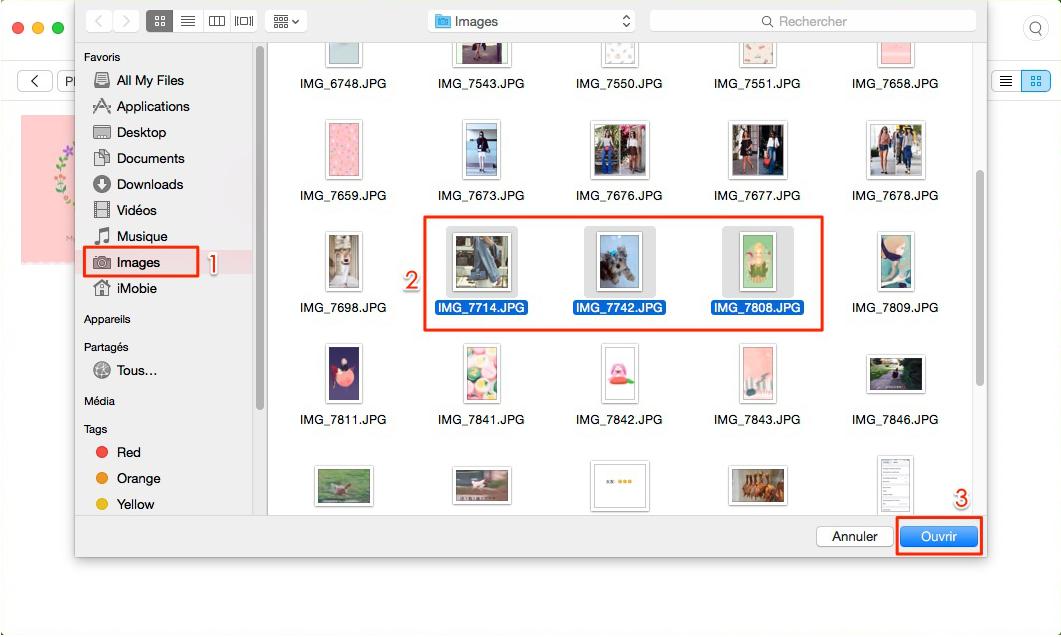 Moyen de transférer des photos Mac vers iPhone X/8 - étape 3