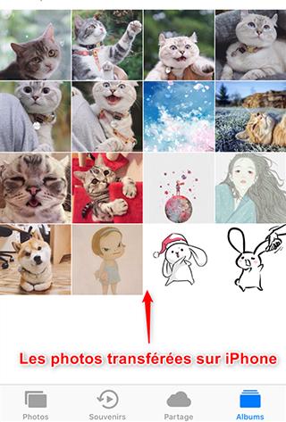 Transférer les photos de PC vers iPhone 6/6s (Plus)