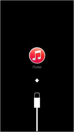 iOS 12へアップデート中に利用規約から進まない対処法2 - iOSデバイスがリカバリーモードに入る
