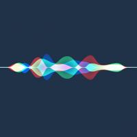 macOS High Sierraの不具合- Safariの不具合