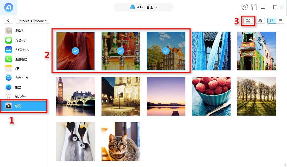 Step 6 iCloudバックアップから写真をダウンロードする