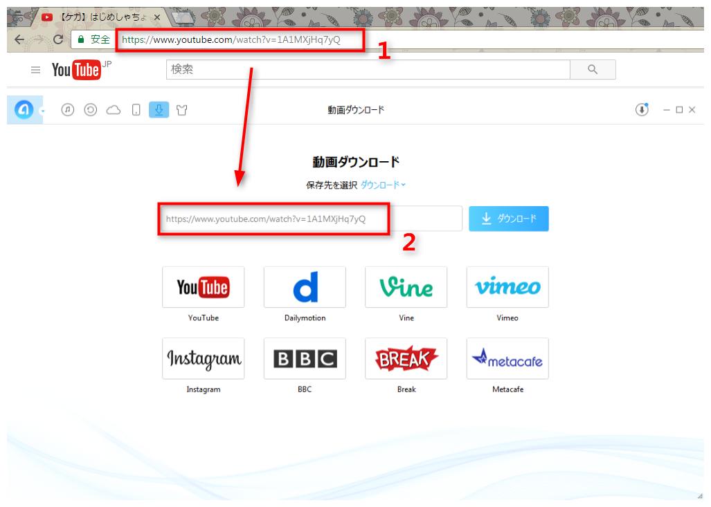 ステップ2 YouTube動画のURLをAnyTransにコピー&ペーストする