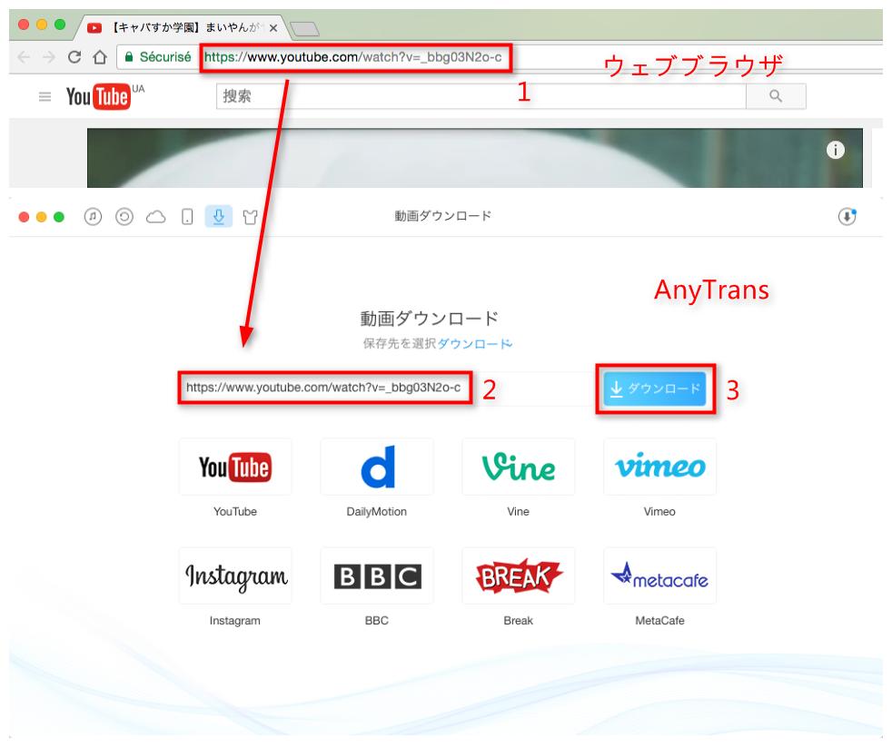 Step 2 YouTube動画のURLをコピー&ペーストする