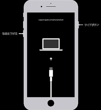 写真元: support.apple.com