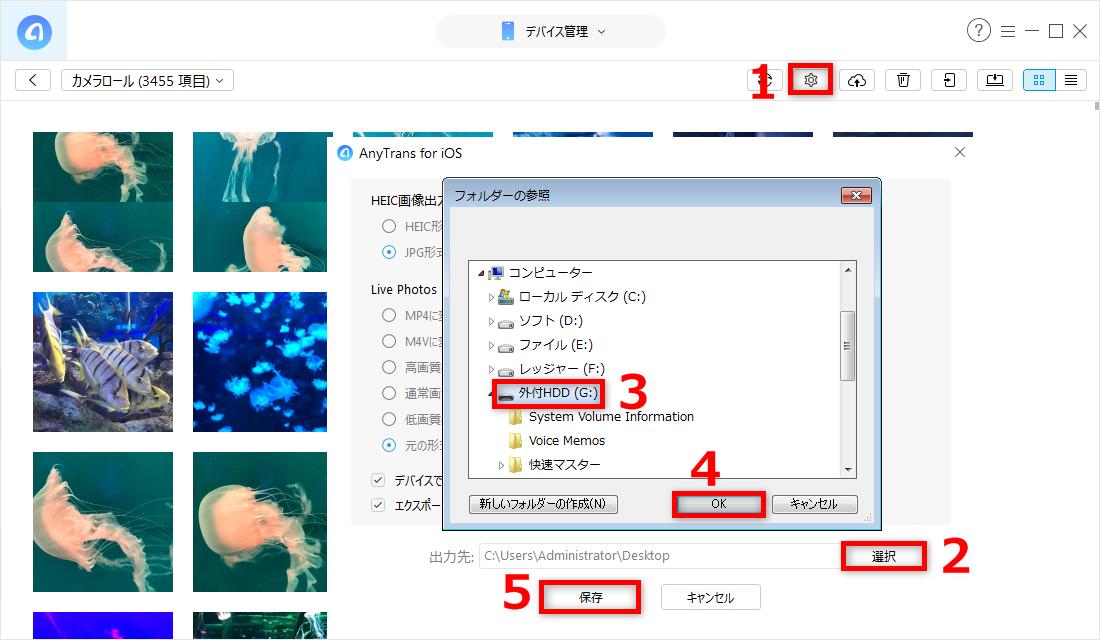 Step 3:写真の出力先を外付HDDに設定する